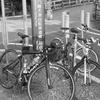 京都八幡木津自転車道線 サイクリング 2016 (2回目)