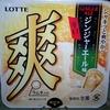 【新商品】大人向けアイス!? 爽 ジンジャーエール味(辛口)