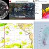 【台風情報】『猛烈な』台風25号のはるか東には台風26号のたまごが存在!ただ米軍・ヨーロッパ中期予報センターの予想では今のところ台風のたまごは東経180度を越えず、『越境台風』とはならない見込み!!