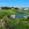 山寺池(福島県須賀川)