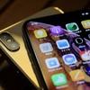 凄い!iPhoneXsのカメラ