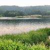 赤沢溜池(新潟県津南)