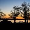 アメリカでキャンプ旅をしたい全ての人に読んで欲しい記事