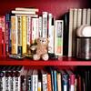 ユニークな書店兼カフェをご紹介!かもめブックスってご存知ですか?