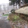 この冬初の積雪