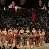 人生初のライブ大相撲観戦は、平成最後の天覧相撲