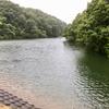 笹尾池(富山県射水)