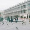 ヴェネツィア #11