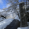 京都大原「三千院」雪降り積もる