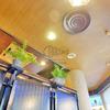 【心斎橋 アトラス】 約50年続く昭和レトロな喫茶店でモーニング