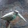 鳥の声で目覚める
