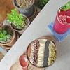 済州島(チェジュ島)カフェ #緑に囲まれたカフェ(3)「カフェ901」