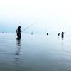 2連続釣行の結果などを・・・