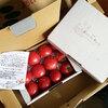 今年もニセコ アムリタファームの美味しい塩トマトが届きました!