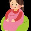 妊婦さんのお腹は触る派です。
