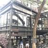 チャオプラヤー川沿いにあるお洒落カフェ&ゲストハウス『Bangkok Tree House』で一息。