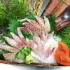きょうもイキの良いお魚入ってます! いさぎ、天然しまあじ、かつお棒鮨、エゾバイ
