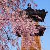 金沢の三櫓「浅野川大橋詰」