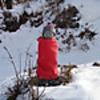 雪中の丹沢(三ノ塔、塔ノ岳、、、、二俣)