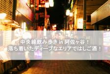 中央線飲み歩き in 阿佐ヶ谷!落ち着いたディープなエリアではしご酒!