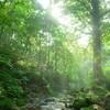 新温泉町 滝見ツーリング #猿壺の滝