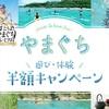 山口県民限定遊び・体験半額キャンペーン!!!