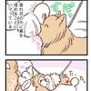 嗅ぎ合戦【140】