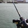 釣行 伊予市 ベイトタックル キャスティング練習