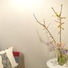 オフィスの玄関は春の香りでいっぱい