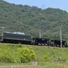 第491列車 「 近江今津常備ホキ2両の交番検査に伴う回送を狙う 」