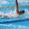 成人水泳に入会