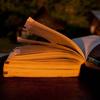 OSやネットワークなど初心者でも低レイヤー技術について学べる7冊の書籍