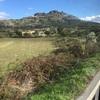 2016年ポルトガルの旅 いざモンサントへカステロ・ブランコからバスで