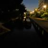 夕闇に映える遊歩道