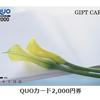 3月株主優待7239タチエス 2000円のクオカードを400円程でゲットする凄技