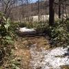 歩き旅のスケッチ[中山道総集編]8・・・峠道(後編)