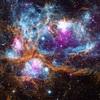 科学者達は現在、宇宙そのものが意識だと考えています