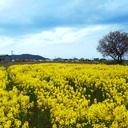 滋賀県立大学 フラワーエネルギー「なの・わり」活動日誌