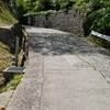 秋田市千秋公園、今はツツジが見頃です。秋田犬にも会えるよ!