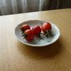 ミニ菜園だよりプラス ⑧ がんばれ野菜たち