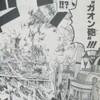 ワンピースブログ[五十一巻] 第495話〝ガオン砲〟