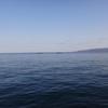 【高位脛骨骨切り術】術後55日 ♪海は広いな大きいなぁ♪