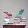 日本 地震国では、本の横積み危険