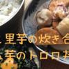 【面倒な事なし!】イカと里芋の炊き合わせ/つくね芋の食べ方 2品