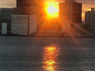 豊洲ぐるり公園ランニング〜綺麗な夕陽が見られました〜
