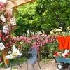 324-花菜ガーデンに聖地巡礼しに行ってきた!