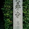 なつやすみ五日目②~仏像との対話 #3 鈴虫寺の草鞋を履いた幸福地蔵菩薩~