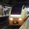 【十日町雪まつり】臨時列車に乗って十日町雪まつりへ行ってみた。十日町雪まつり号にも乗車!