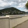 旅の羅針盤:ネッカー川あってこそ、ハイデルベルクの風景!! ※ネッカー川沿いは、散歩に最適です。