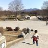 【休日の過ごし方】公園がわりと苦手です。